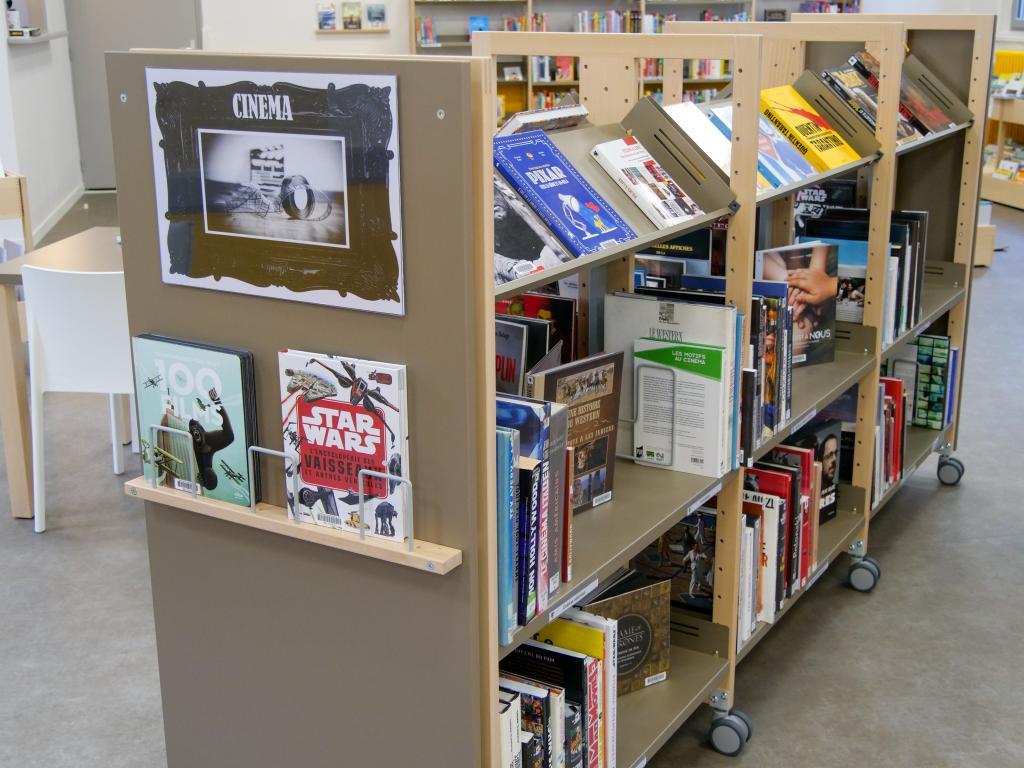 De nombreux ouvrages sur l'audiovisuel et le cinéma
